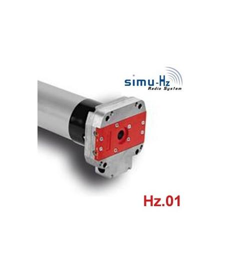 Moteurs SIMU pour portes de garage : Moteur T6120/12 DMI Hz.01 - T6 120/12 - 6120 Hz.01 avec secours
